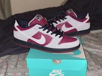 "DS Nike SB Dunk Low ""True Berry"" 11.5"