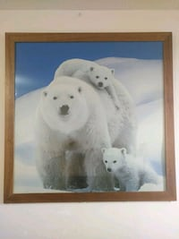 "Large 45"" Polar Bear Picture & Frame Newmarket, L3Y 8J5"