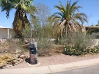Landscaping Apache Junction