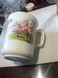 England Royal Albert blossom time tea coffee mug