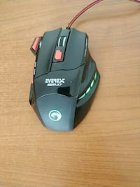 Everest SGM X7 mouse Istanbul, 34120