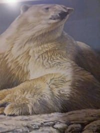 Robert Bateman summer in artic print