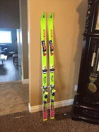 Vintage skis Wellesley, N0B