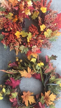 2 Fall Wreaths for your doors Tucson, 85730