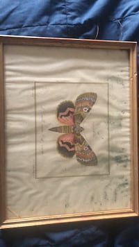 Framed watercolor of butterfly  New York, 10021