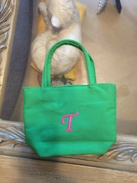 """Green tote for an American girl or 18"""" doll Jessup, 20794"""