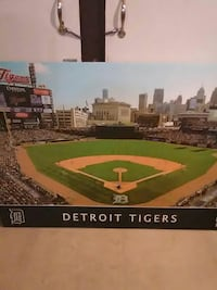 Detroit tiger's painting