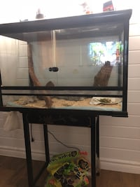Cage reptiles  Montreal, H1Z