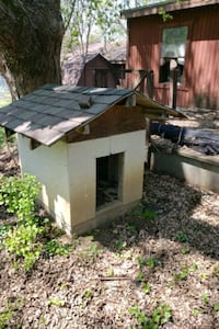 Dog house Newton, 50208