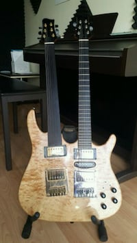 Duble Neck Electric Guitar (Custom)