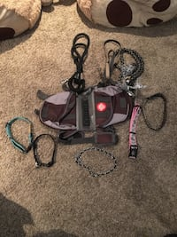 Dog collars and leashes  Edmonton, T5L 1X5