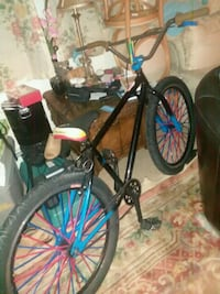 Se bike Hempstead, 11550