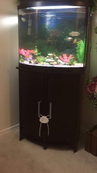 Tank fish 36g come with everything  London, N6H 5G2