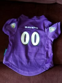 Ravens Dog Jersey (Medium) 42 km