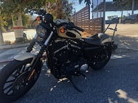 Beautiful Harley Davidson Iron 883 Los Angeles