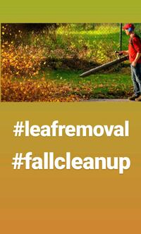 Landscaping, leaf removal free estimates