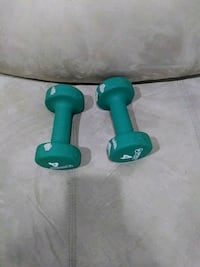 green and black fixed weight dumbbells Laurel, 20708