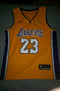 Lebron James Lakers Jersey 42 km