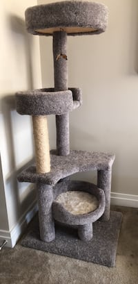 Cat Tree Whisker City  Reston, 20190