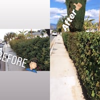 Custom landscaping & all property clean ups Colton