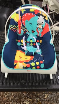 baby's blue and white Fisher-Price bouncer sleeper