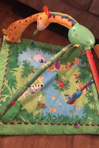 Rainforest play mat. Ashburn, 20147
