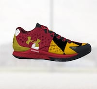 Curry 1 low - Custom Maryland College Park, 20740