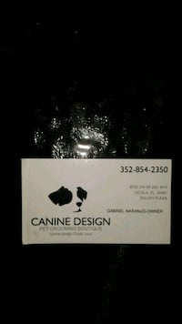DOG BATHER EXPERIENCED call  [TL_HIDDEN]  Ocala