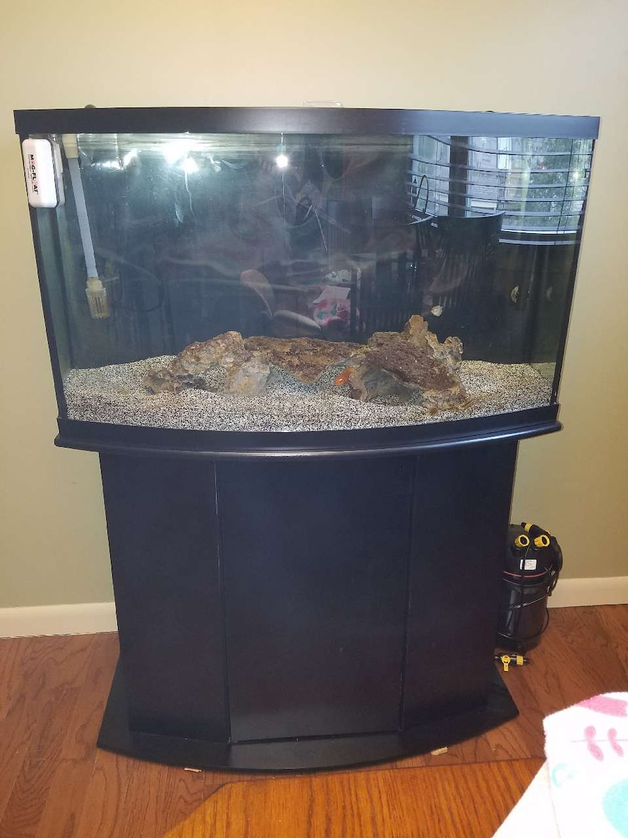 Used price drop complete 46gal aquarium package in warwick for National geographic fish tank filter
