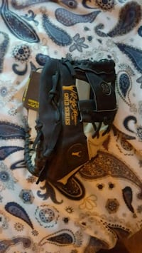 Roberto Alomar Gold Series Collectors Glove Winnipeg, R3P 0V8