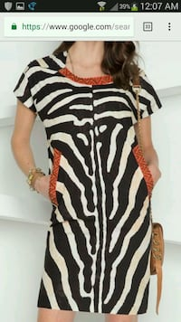 New w/tags Carlisle Etcetera Zebra Stripe Dress  Germantown, 20874
