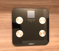 GoWise Weight Scale 赫恩敦, 20171