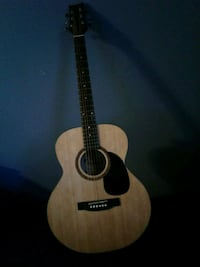 Beaver Creek Acoustic Guitar with Case