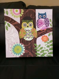 Owl picture Stafford, 22554