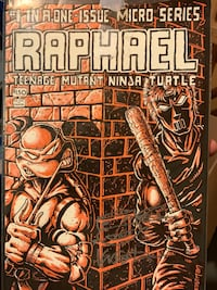 Ninja turtles signed by Kevin Eastman Raphael
