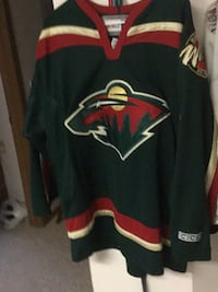 Minnesota Wild   Official Licensed  NHL Jersey Saint Cloud, 56303