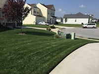 Lawn care and light moving Martinsburg