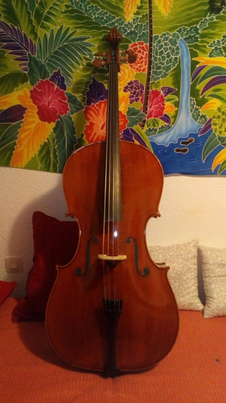 Cello 4/4 en perfectas condiciones