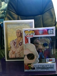 Ric Flair Woo Edition Exclusive Funko Pop Thousand Oaks, 91320