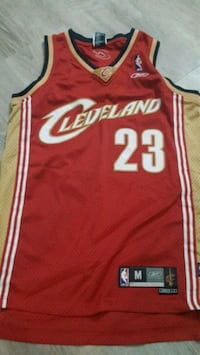 Lebron jersey Valley City, 44280