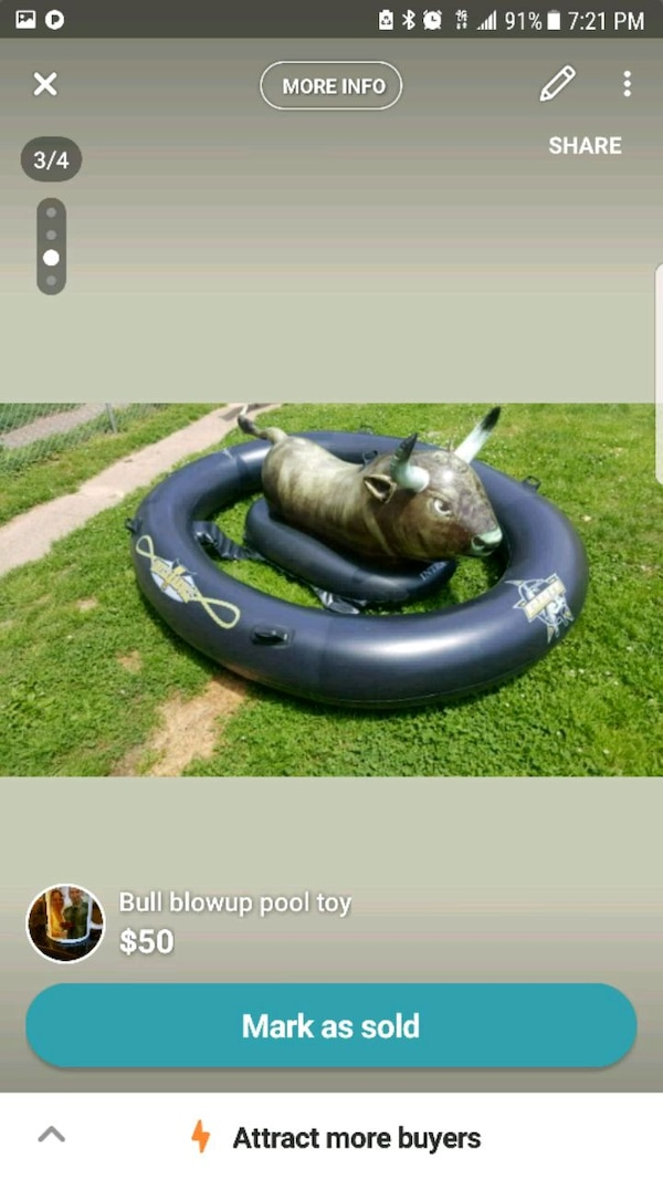 Blow up bull for pool
