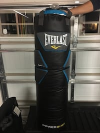 Everlast powershot 100lb heavy punching bag Hubert, 28539