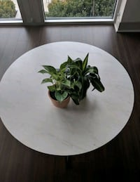 New in box marble coffee table Tysons, 22102