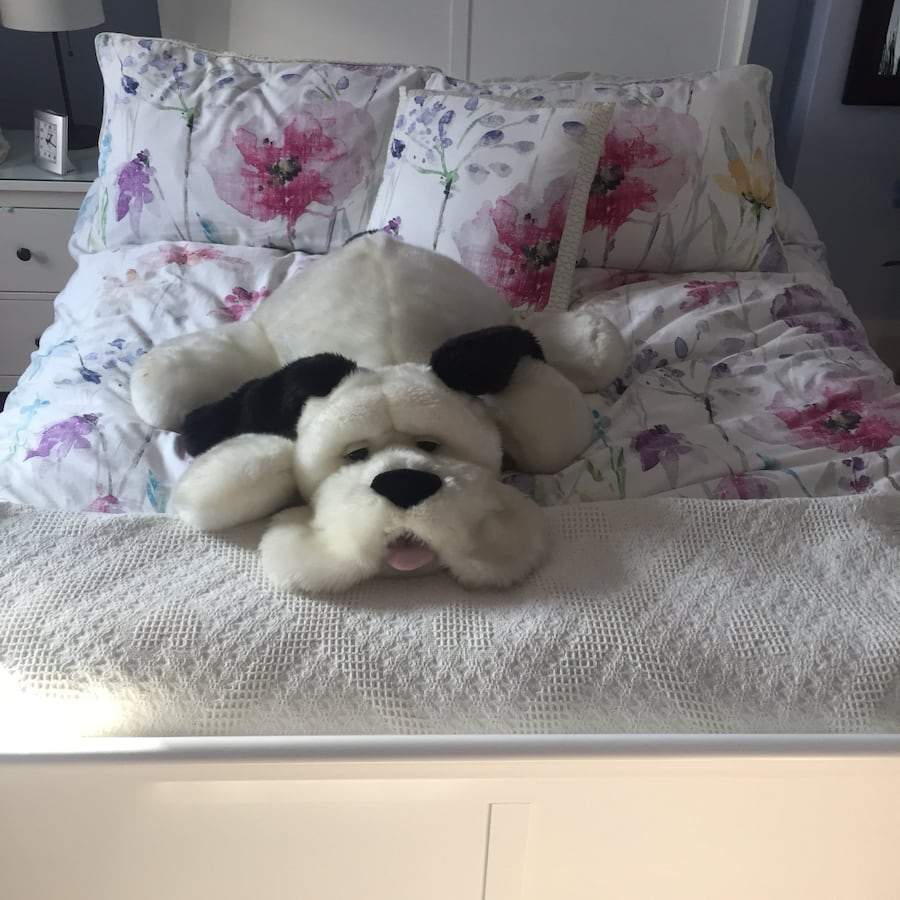 Quality stuffed animal bundle, everything included in photos