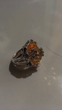 gold-colored and red gemstone ring Hubbardston, 01452