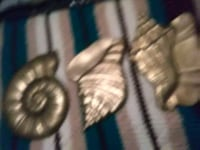 Solid brass. sea shell15.00 obo Hagerstown