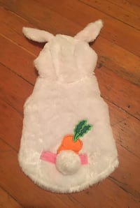 Easter Bunny Costume for Cat / Dog Vancouver, V6G 2C9