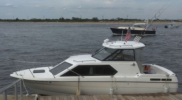 White and black speed boat