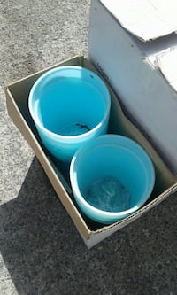 two blue plastic containers in box Shannonville, K0K 3A0