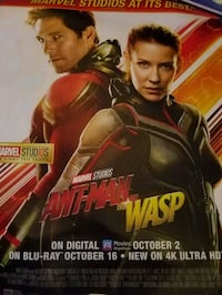 Ant-Man and The Wasp poster 22 x 28 Sterling, 20165